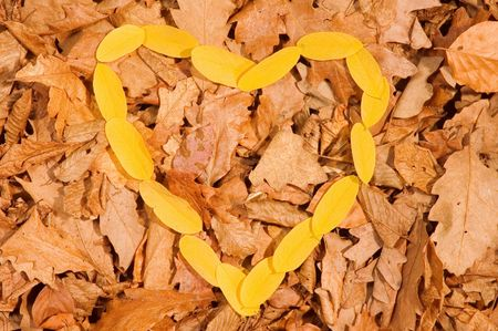oaken: Yelow heart of leaves on autumnal leaves from oaken