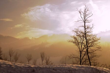 Winter landscapes with frozen snow in the morning photo