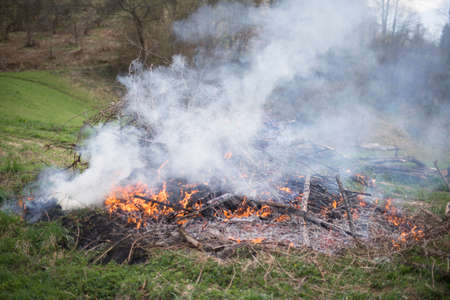 flare up: Fire in the field, spring cleaning Stock Photo