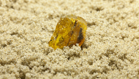 rosin: Raw amber from the shores of the Baltic Sea in the Kaliningrad region , lying on the sand