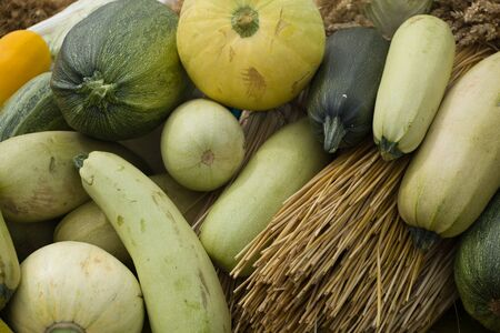 zucchini of different varieties lie together with bunches of grain