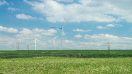 windfarm: Parque e?lico en una pradera verde contra un cielo azul