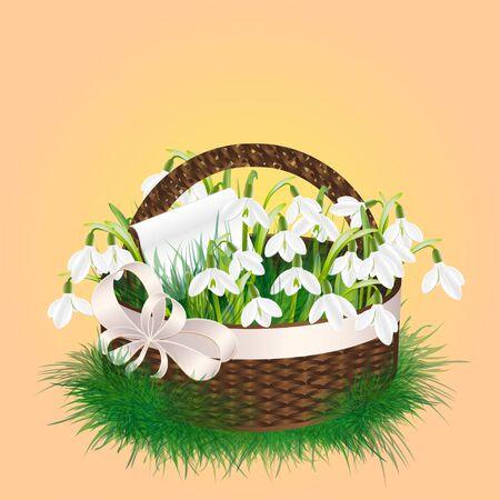 wicker basket: Spring bouquet of snowdrop flowers in a wicker basket Illustration
