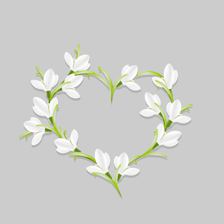 snowdrops: Floral heart with snowdrops. Vector,