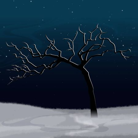 snowcovered: Winter landscape with white abstract snow-covered tree and fall snow. Night scenery. Vector, EPS 10