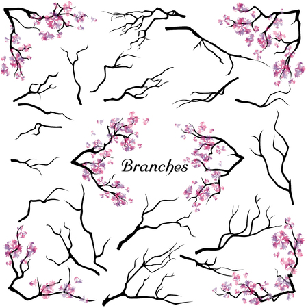 cherrytree: Set of branches isolated on white background. Abstract blooming cherry-tree. Floral decorative brush. Watercolor imitation.
