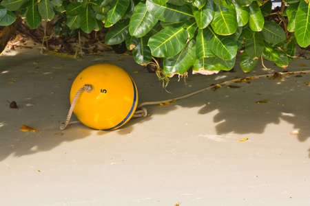 Boay  at Surin Island In Thailand Stock Photo - 12888591