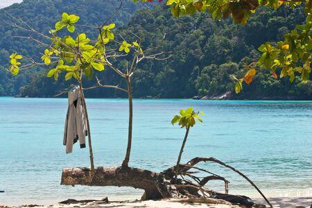 Jacket on Surin Island  s beach photo