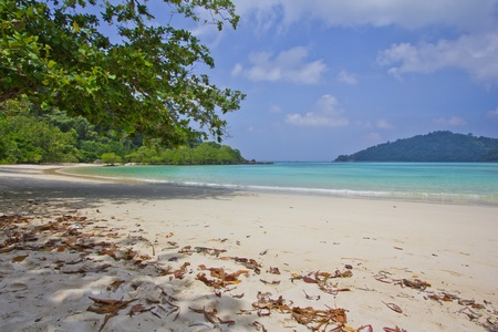 Beach at Surin Island, Thailand Stock Photo - 13008585