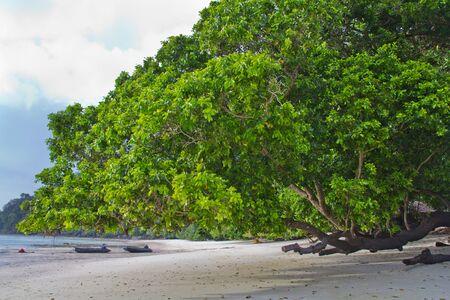 Beach at Surin Island photo