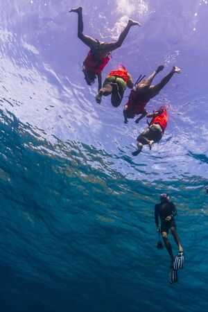 Free diving at Similan national park in Thailand photo