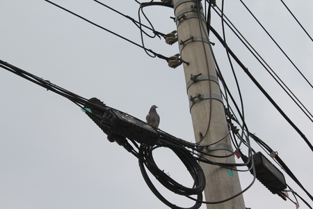 a telephone pole and wire