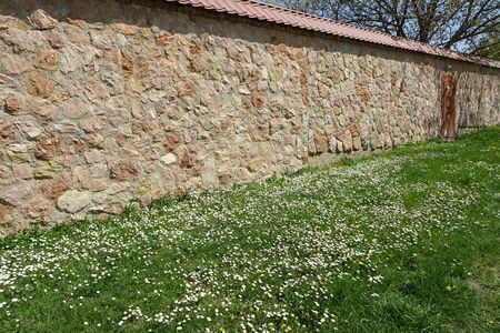 a wall of stone blocks with a red metal door and daisies blooming in front of it Stock Photo