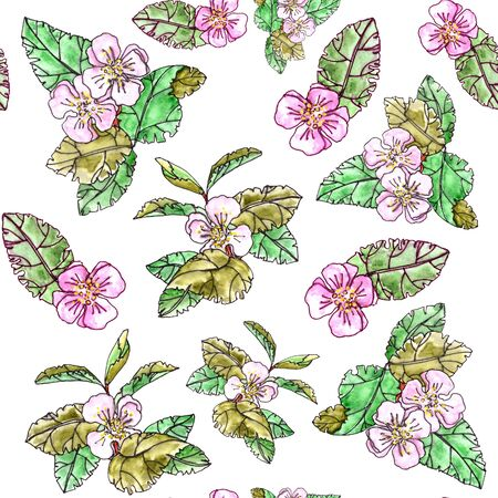 seamless pattern of apple trees with pink flowers and leaves on a white background Banque d'images