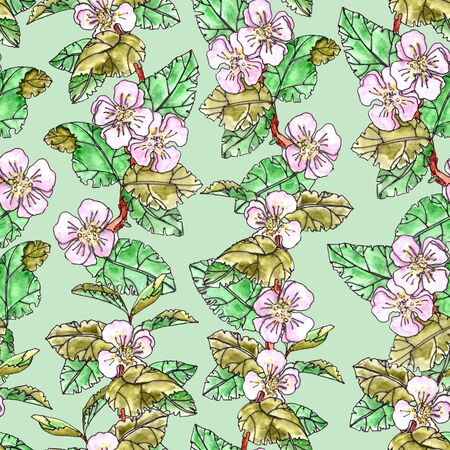 seamless pattern of apple trees with pink flowers and leaves on a light green background Banque d'images