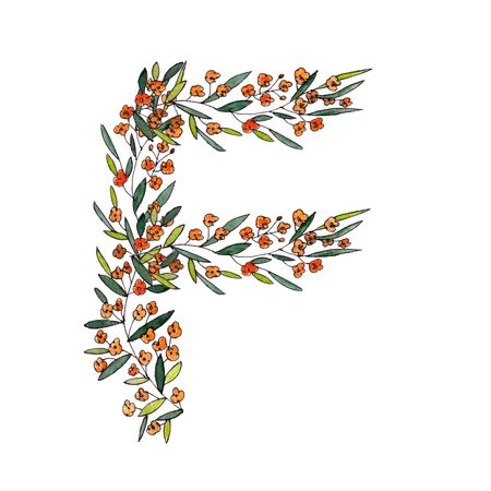letter F of the english and latin floral alphabet. a colorful graphic on a white background. letter F of sprigs blooming with orange flowers.