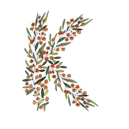 letter K of the english and latin floral alphabet. a colorful graphic on a white background. letter K of sprigs blooming with orange flowers.