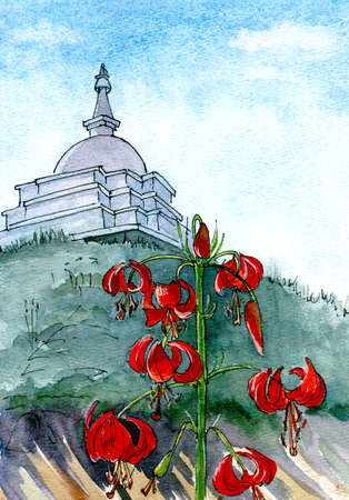 wild siberian lilies, Lilium pumilum, with curled flowerleaves and big pistils on Ogoy island on Baikal lake against the backdrop of a Buddhist stupa, watercolor graphic drawing, travel sketch. In Siberia, this flower is very fond of and it is called Saranka and Siberian Orchid