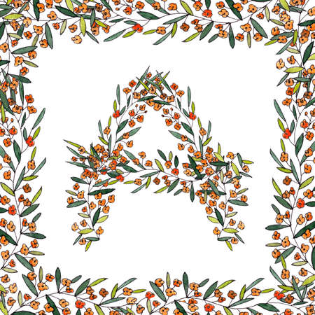 letter A of the english and latin floral alphabet. a colorful graphic on a white background.letter A of sprigs blooming with orange flowers in square frame.