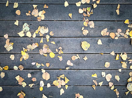 natural wood background, old boards with fallen autumn leaves, selective focus. High quality photo 免版税图像