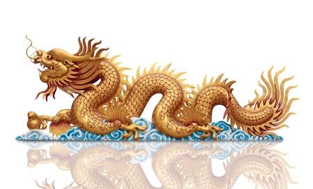 golden Dragon on white background  photo