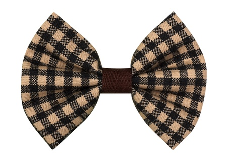 tie bow: Bow tie Archivio Fotografico