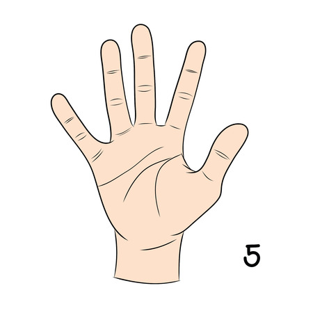 gestural: Sign language and the alphabet,number 5