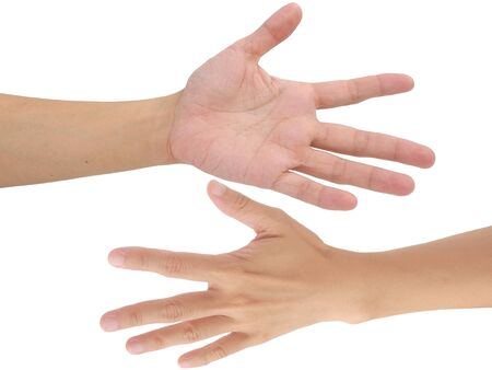 palmistry: human forehand and backhand isolated on white background
