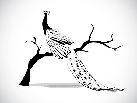 peacock pattern: image graphic style of peacock isolated on white