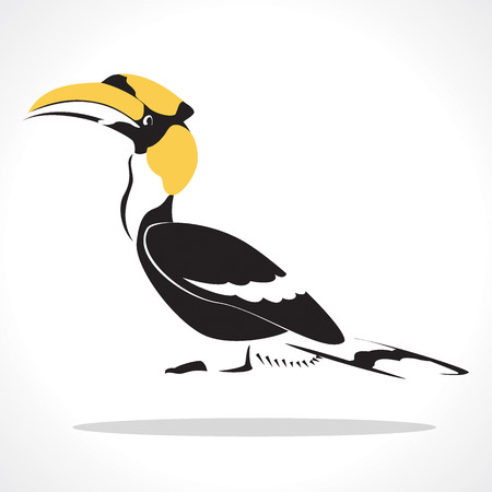 hornbill: image graphic style of hornbill  isolated on white background
