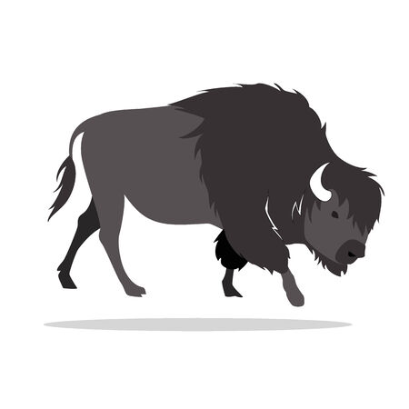 image graphic style of bison  isolated on white background photo