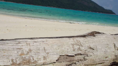 con dao: Old Timber and the Beautiful beach