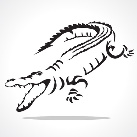 image graphic style of crocodile  isolated on white background