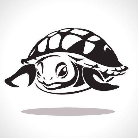 schildkröte: Bild grafischen Stil der Schildkröte isoliert auf weißem Hintergrund Lizenzfreie Bilder