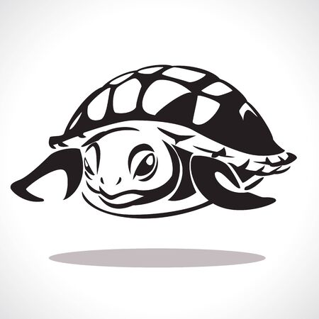 turtle: image graphic style of turtle isolated on white background