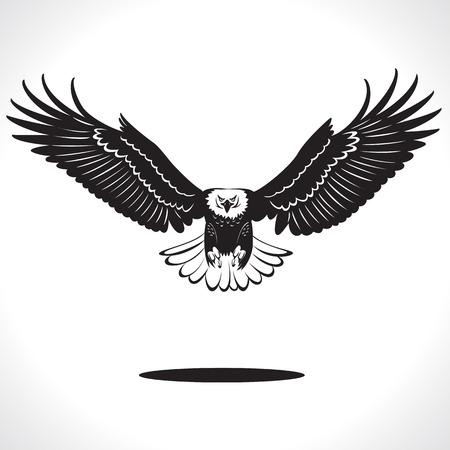 image graphic style of eagle  isolated on white background
