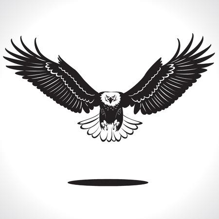 aigle: l'image du style graphique aigle isolé sur fond blanc