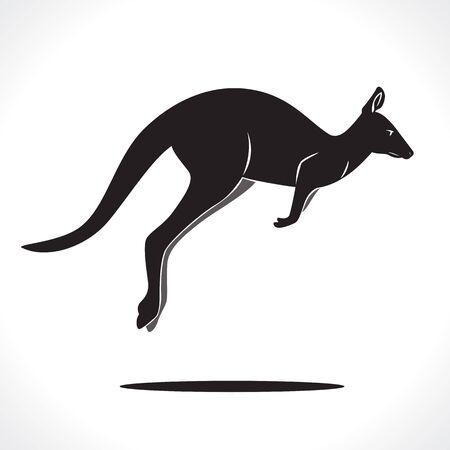 kangaroo: image graphic style of kangaroo  isolated on white background Stock Photo