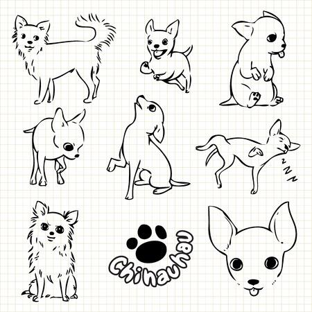 perros graciosos: Dibujo lineal de Chihauhau perro lanzó sobre el uso de la red de papel para el diseño de elementos. Foto de archivo