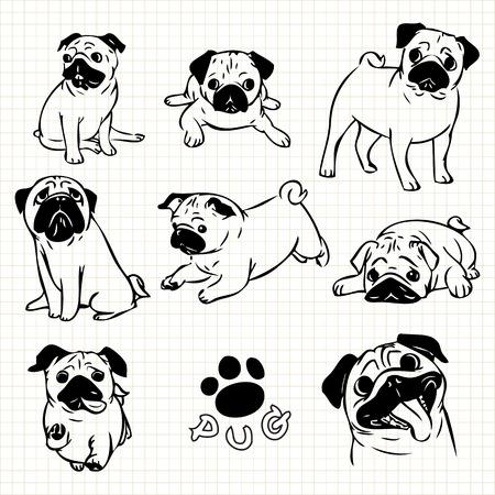 Line drawing  of Pug dog set on grid paper use for elements  design. Reklamní fotografie