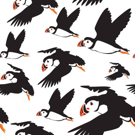 hornbill: Seamless pattern of puffin birds in color use as background, wallpaper, card and wrap paper Stock Photo