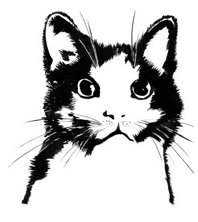 gato dibujo: Silueta del gato