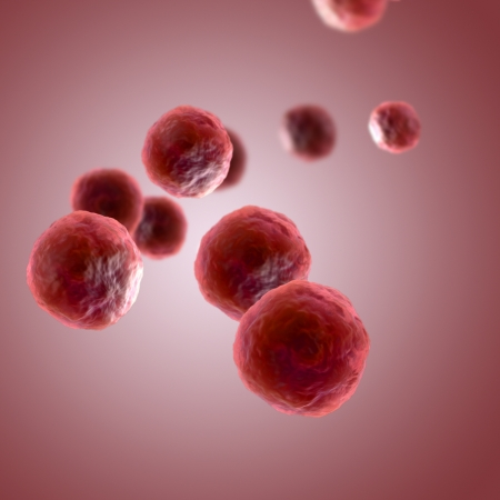 cell biology: 3D Render of Human Cells Stock Photo