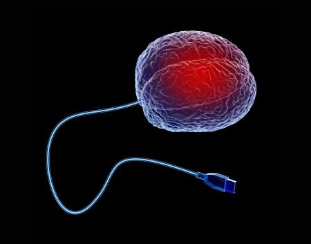 Rendu 3D du cerveau humain avec un câble USB Banque d'images - 20551082
