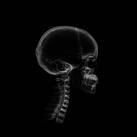 Human Skull isolated on black with X-ray  effect  photo