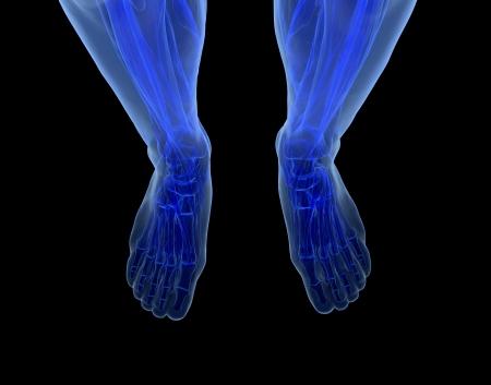 Human feet under X-rays isolated on black. Stock Photo - 20747217