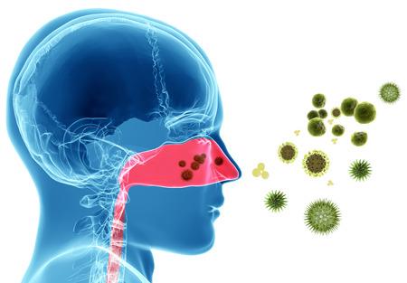 3D-rendering illustratie van pollen of virus