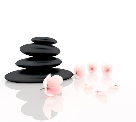 Zen concept with cherry blossom and black stones Standard-Bild