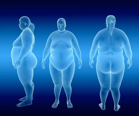 Rendu Illustration de femme obèse
