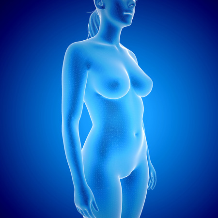 healthy body: 3d rendering illustration of female Body